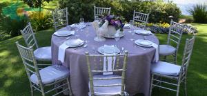 Sillas Tiffany Plata Salas Lounge Vip